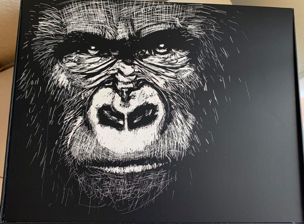 Gorilla by Ashley Hartwig, Math Instructor at SCC