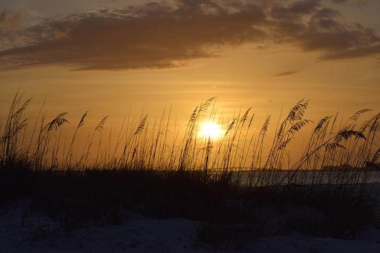 """""""Sundown on the Dune"""" by Michelle Almendinger at CCC"""