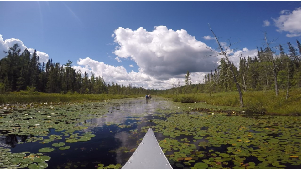 Students canoe through a northern bog in the Boundary Waters Canoe Area Wilderness ….Photo: Allison Nodurft